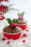 Christmas holly berry cake Stock Photography