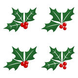 Christmas holly berry icons Stock Photo