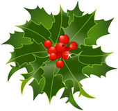 Christmas Holly Berry Stock Photo
