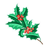 Christmas Holly Berry Set. Vector Illustration Royalty Free Stock Images