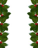 Christmas Holly border. Christmas design with holly leaves for greeting card, invitation, border   or background with copy space. Image and illustration Stock Photography