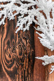 Christmas holly border decoration Stock Photo