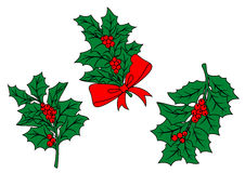 Christmas holly branch Stock Photography