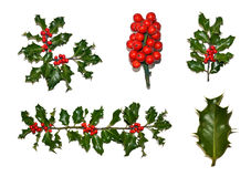Christmas Holly Collection. A collection of isolated holly images including a border, corner, berries, sprig and leaf Stock Photo