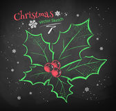 Christmas holly. Royalty Free Stock Images
