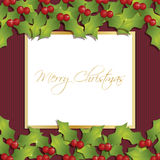 Christmas holly decoration Stock Image