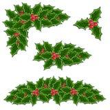 Christmas holly decoration set. Illustration Stock Photography