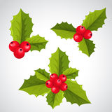 Christmas holly decorations Stock Photo