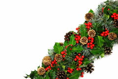 Christmas holly diagonal  Stock Photos