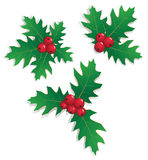 Christmas holly elements Royalty Free Stock Photography