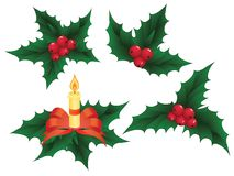 Christmas holly elements,  illustration Stock Photography