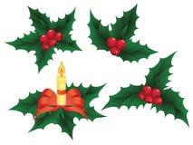 Christmas holly elements,  illustration Stock Photography