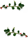 Christmas holly frame. Christmas holly branch frame with leaves royalty free stock images