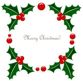 Christmas holly frame. Holly berry fruit frame. illustration Royalty Free Stock Image