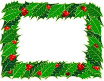 Christmas holly frame. Pattern  of European holly frame Royalty Free Stock Photos