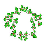 Christmas holly frame - vector background. The vector illustration of beautiful christmas holly branch, Winter Festival Brushes,  eps 10 Stock Photos