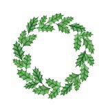 Christmas holly ilex aquifolium wreath isolated on the white background. Branches  with leaves. Hand painted christmas holly ilex aquifolium wreath isolated on Stock Images