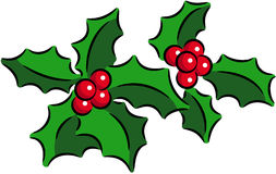 Christmas Holly Stock Photography