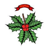 Christmas holly illustration Royalty Free Stock Photo