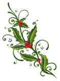 Christmas, holly, leaves Royalty Free Stock Photo