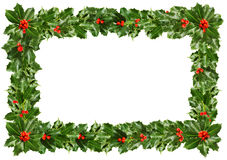 Christmas Holly Leaves - Frame On White Stock Image