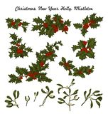 Mistletoe and holly. Christmas and New Year. Vector illustration in vintage style with floral pattern. Christmas. Holly. Mistletoe. New Year. Vector stock photos