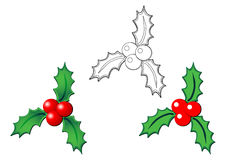 Christmas holly over white Stock Photography