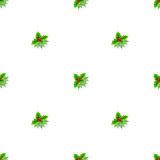 Christmas holly pattern on white background Stock Images