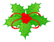 Christmas Holly & red berries Stock Photos