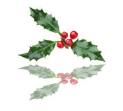 Christmas holly and red berries with reflection Stock Photos