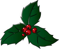 Christmas holly sprig. With berries original vector illustration Stock Photo