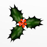 Christmas Holly Twig for Christmas Eve. Royalty Free Stock Images