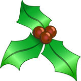 Christmas holly on white Royalty Free Stock Images
