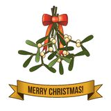 Christmas holy branch icon Stock Photography