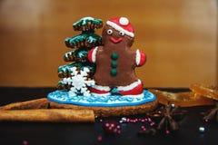 Christmas homemade  cookies Royalty Free Stock Image