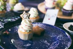 Christmas homemade cupcake and gingerbread cookies. Stock Images