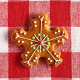 Christmas homemade gingerbread cookie Stock Image