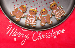 Christmas homemade gingerbread cookies Royalty Free Stock Photography