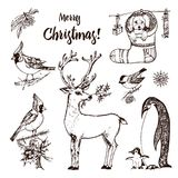 Christmas horned deer and animals. New Year penguin and bird cardinal or tit in the forest. winter holidays. engraved. Hand drawn in old sketch and vintage stock illustration