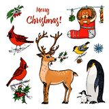 Christmas horned deer and animals. New Year penguin and bird cardinal or tit in the forest. winter holidays. engraved. Hand drawn in old sketch and vintage royalty free illustration