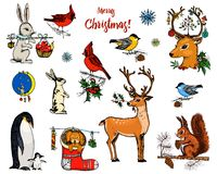 Christmas horned deer, squirrel and animals. New Year penguin and bird cardinal or tit in the forest. winter holidays. Engraved hand drawn in old sketch and royalty free illustration