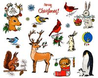 Christmas horned deer, squirrel and animals. New Year penguin and bird cardinal or tit in the forest. winter holidays. Engraved hand drawn in old sketch and stock illustration