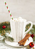 Christmas hot chocolate with marshmallow Stock Photos