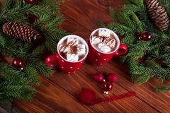 Christmas hot chocolate with marshmelow on a dark wooden background, christmas tree branches decorating. Royalty Free Stock Image