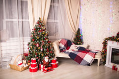 Christmas House with Christmas tree Stock Photos