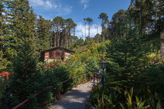 Christmas House Gramado Brazil Royalty Free Stock Images