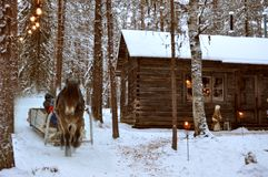 Christmas house horse Royalty Free Stock Photography