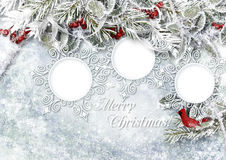 Christmas ice background with frame, holly and with frost Royalty Free Stock Photos