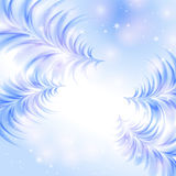 Christmas icy abstract background. With fir-trees Royalty Free Stock Images