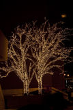 Christmas. Illuminated trees. Royalty Free Stock Photography